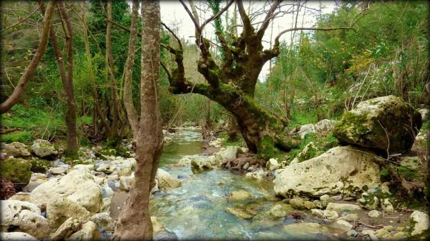 Tra Chania e Rethymno Lappa Argiroupolis creta